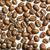 weiß · Streifen · braun · Kaffeebohnen · Hintergrund - stock foto © lightpoet