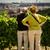toeristen · Praag · oude · binnenstad · vierkante · Tsjechische · Republiek · 2014 - stockfoto © lightpoet