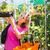tuinman · markt · tuin · kwekerij · vrouwelijke · bloemist - stockfoto © lightpoet