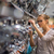 bastante · mulher · jovem · escolher · torneira · casa · pele - foto stock © lightpoet