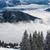 зима · альпийский · декораций · высокий · гор · деревья - Сток-фото © lightpoet
