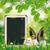 iyi · paskalyalar · yumurta · tahta · tavşan · kulaklar · metin - stok fotoğraf © limbi007