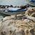 рыбалки · пляж · готовый · новых · рыбы · работу - Сток-фото © limpido