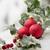 Рождества · красный · зеленый · зима · белый - Сток-фото © limpido
