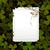 клевера · трава · аннотация · лист · зеленый · белый - Сток-фото © lirch