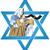 estrela · escudo · selar · tradicional · hebraico · assinar - foto stock © lironpeer