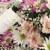 flower macro background stock photo © lisafx