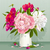 rose · rouge · blanche · luxueux · fleur · printemps - photo stock © lisashu