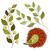 vector · ingesteld · gekleurd · contour · bloemen · bladeren - stockfoto © lissantee