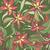 floral · padrão · colorido · flores · sem · costura - foto stock © LittleCuckoo
