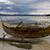 morza · brzegu · oddziału · Szkocji · ciemne · chmury - zdjęcia stock © lkpro