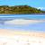 beautiful andilana beach seaweed in indian stock photo © lkpro