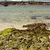 cabine · ilha · confortável · pequeno · cênico - foto stock © lkpro