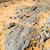 öreg · kövület · sivatag · Marokkó · Szahara · kő - stock fotó © lkpro