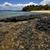 fülke · befejezés · kő · tengerpart · kíváncsi · égbolt - stock fotó © lkpro