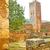 coluna · pormenor · tradicional · Grécia · arquitetura · pedra - foto stock © lkpro