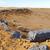 Bush · edad · desierto · Marruecos · sáhara · rock - foto stock © lkpro