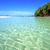 beach ile du cerfs seaweed in indian ocean people stock photo © lkpro