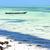 alga · costa · água · verão · oceano · África - foto stock © lkpro