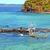 beautiful andilana beach seaweed in dead tree and rock stock photo © lkpro