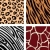 animal pattern   tiger zebra giraffe leopard stock photo © lordalea