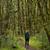 kadın · uzun · yürüyüşe · çıkan · kimse · izlemek · Yeni · Zelanda · seyahat - stok fotoğraf © lostation