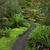 izlemek · yol · Yeni · Zelanda · orman · doğa · yeşil - stok fotoğraf © lostation