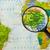 mapa · federal · república · Nigéria · cidade · vidro - foto stock © lostation
