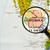 harita · cumhuriyet · Guatemala · şehir · dünya - stok fotoğraf © lostation