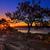 boue · faible · marée · vieux · clôture - photo stock © lovleah