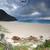 рок · ручей · южный · конец · пляж · воды - Сток-фото © lovleah