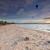 naplemente · növénytan · dél · Sydney · Ausztrália · égbolt - stock fotó © lovleah