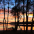 болото · Размышления · деревья · воды · дерево - Сток-фото © lovleah