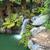 滝 · 水 · カスケード · 丘 - ストックフォト © lovleah
