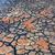 secas · rachado · terra · verde · planta · crescente - foto stock © lovleah