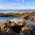 banyo · deniz · kabuk · havuz · doğa · güzellik - stok fotoğraf © lovleah