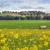 заброшенный · фермы · сельский · Австралия · ржавые - Сток-фото © lovleah
