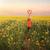 malowniczy · wiejski · daleko · oka · puszka · zobaczyć - zdjęcia stock © lovleah