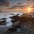 海藻 · ビーチ · 午前 · テクスチャ · 夏 · 海 - ストックフォト © lovleah