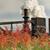 industriali · fumo · camino · bianco · tecnologia · industria - foto d'archivio © lovleah