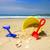 conchas · praia · starfish · espaço · areia · concha - foto stock © lovleah