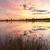 naplemente · tó · puha · narancsok · víz · blues - stock fotó © lovleah