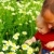 father and son in flowers stock photo © lubavnel