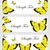 ベクトル · 孤立した · 翼 · 美 · 珍しい - ストックフォト © lucia_fox