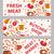 肉 · セット · 実例 · 漫画 · ピース - ストックフォト © lucia_fox