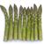 köteg · friss · zöld · spárga · szalag · rusztikus - stock fotó © lucielang