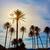 palmeras · España · playa · mediterráneo · agua · nubes - foto stock © lunamarina