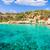 praia · mallorca · ilha · Espanha · natureza · paisagem - foto stock © lunamarina