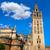 cattedrale · torre · Spagna · costruzione · città · architettura - foto d'archivio © lunamarina