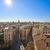 valencia skyline old town aerial view stock photo © lunamarina
